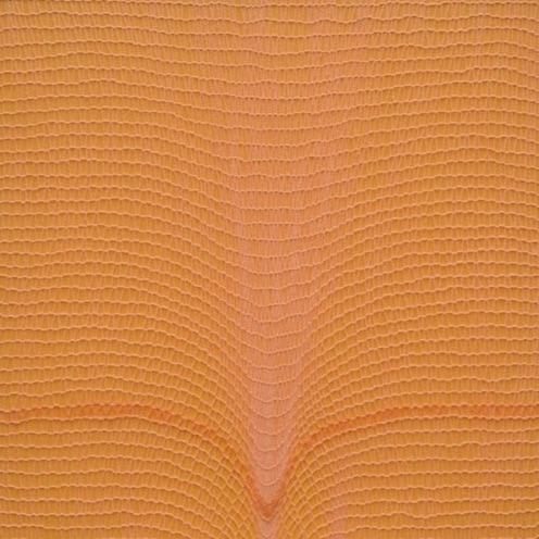 shobha broota, resonance, untitled (orange)